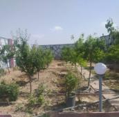 باغچه ۴۰۰ متری