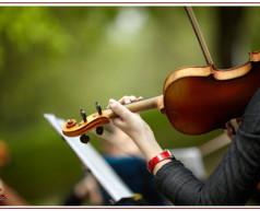 آموزشگاههای موسیقی