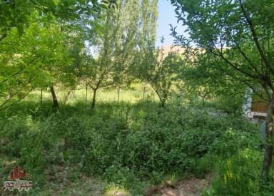 باغچه و آلونک در طالقان