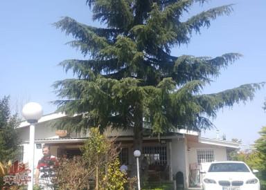 فروش ویلای 870 متری در کلارآباد