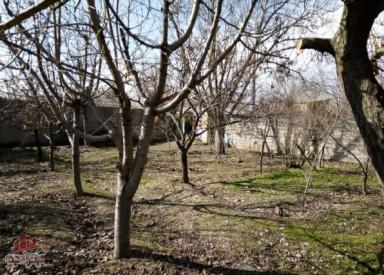 ۶۵۰متر باغ مثمر در شهرک بهروزسرا