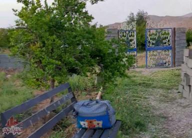 باغ انار قدیمی و مثمر با تنوع درخت های دیگر